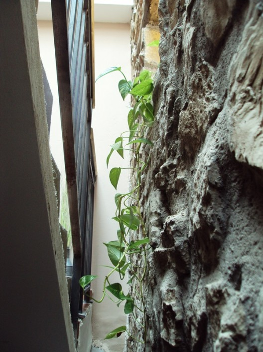 Una cascada de luz y plantas tras la escalera
