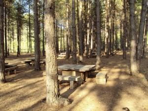 Area recreativa